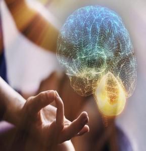 mudancas-no-cerebro-com-mindfulness-752x440